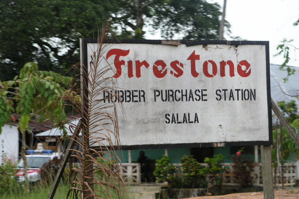Gummiplantaget i Salala, Bong County, Liberia / foto: Mattias Wandler