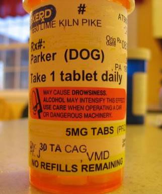 Píldoras para perros
