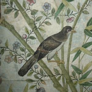 Handpainted Chinese, 18th Century