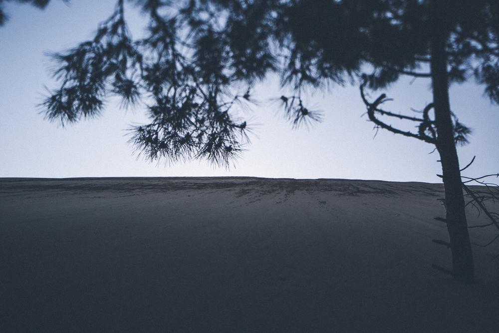 J+M-PylaLoveSession-HD-www.celinehamelin.com-5851.jpg