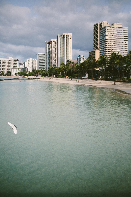 1-oahu-Hawaii2014-10A0026.jpg