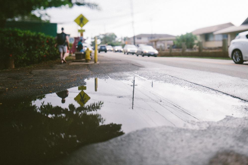 1-oahu-Hawaii2014-10A0056.jpg