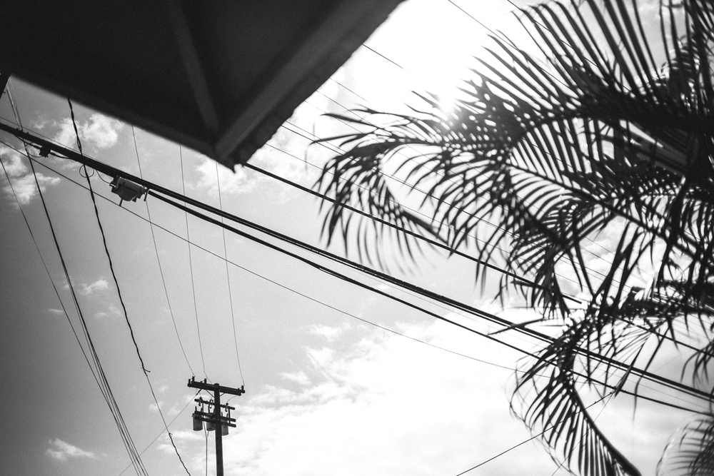 1-oahu-Hawaii2014-10A0121.jpg