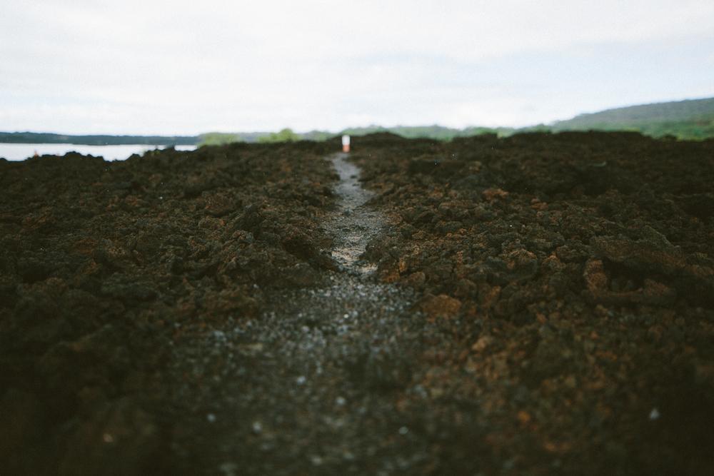 2-maui-Hawaii2014-10ED01252-maui-.jpg