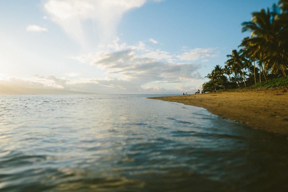 2-maui-Hawaii2014-10ED15152-maui-.jpg