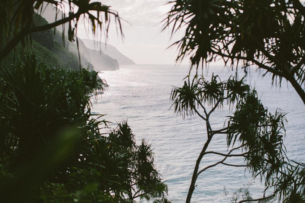 3-kauaiHawaii2014-10ED0121.jpg