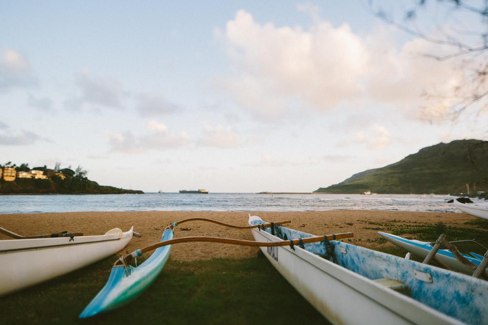 3-kauaiHawaii2014-10ED0434.jpg