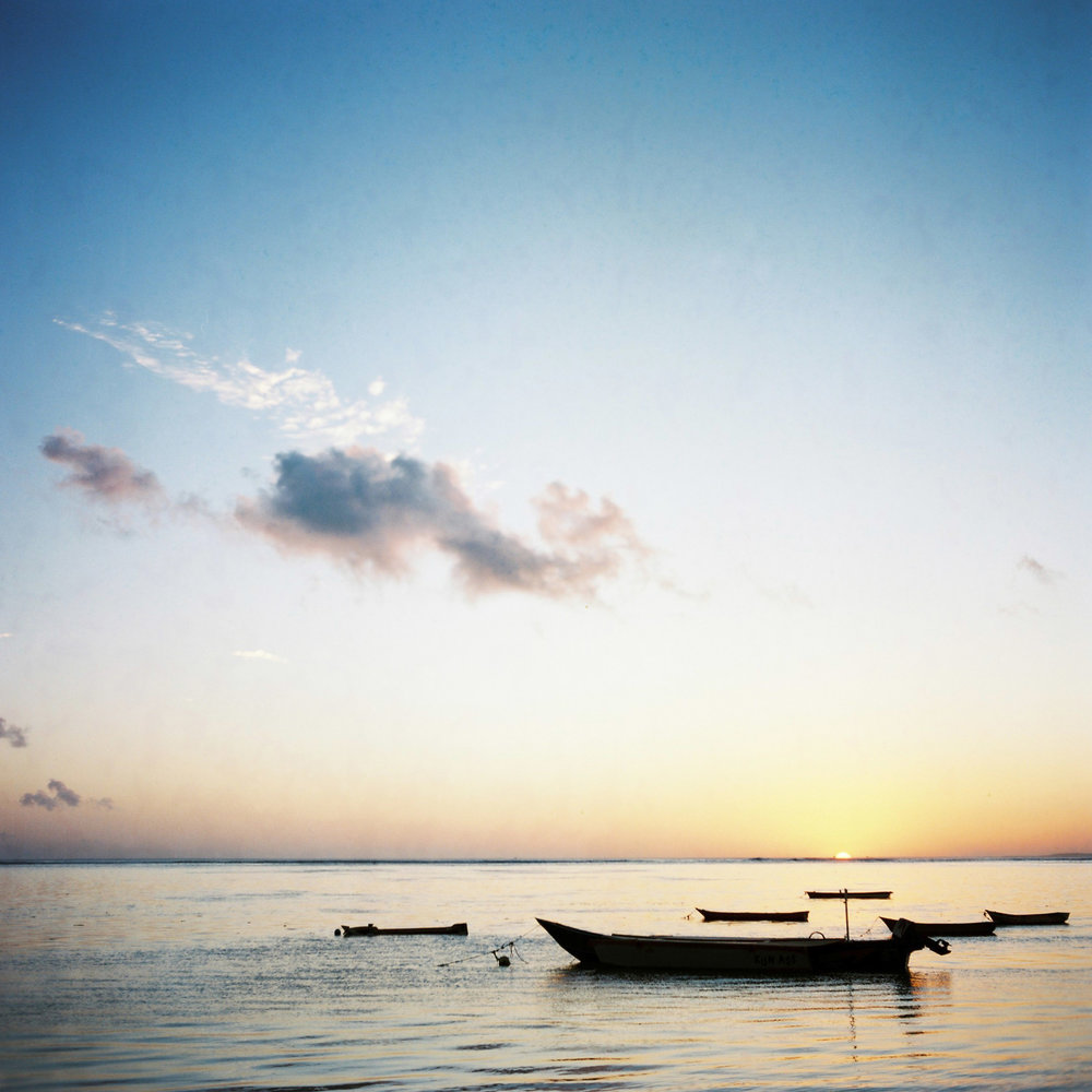 Ocean shelter-248.jpg