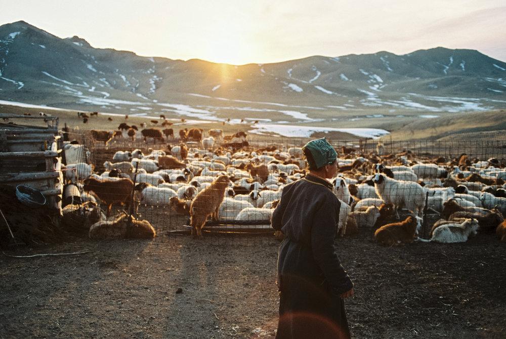 5-Mongolie-125.jpg