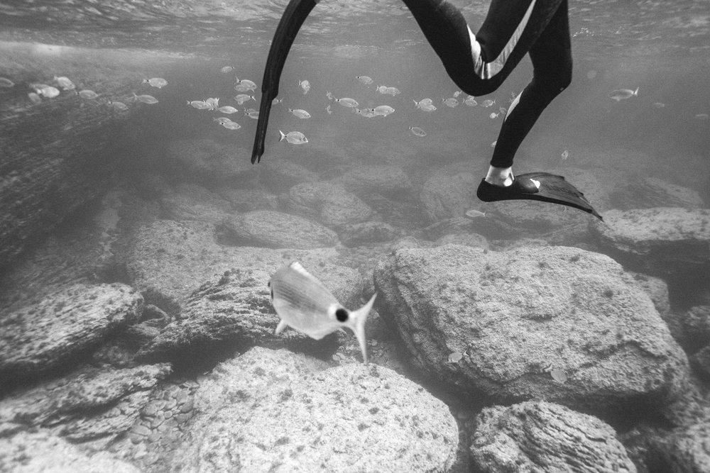 Photographe-aquatique-freedive-couple-argentique-celine-hamelin5.jpg