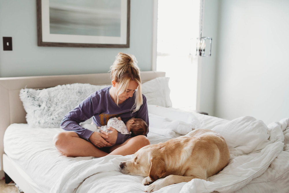 Our Instagram feed is full of blankets & snuggles & here is why...