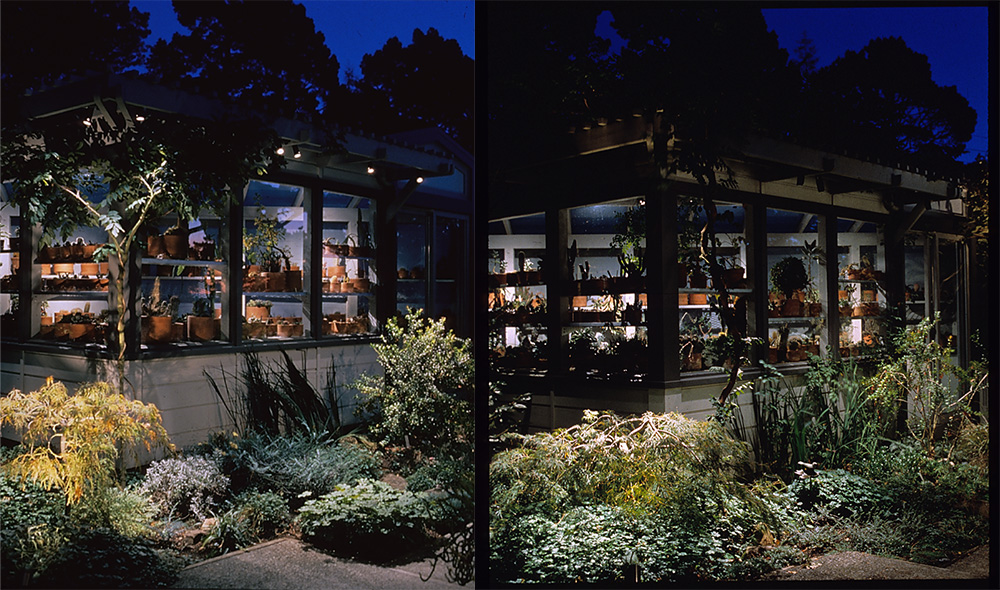 Choosing a fixture that conceals the light source allows our eyes to enjoy the plantings and not feel discomfort from glare