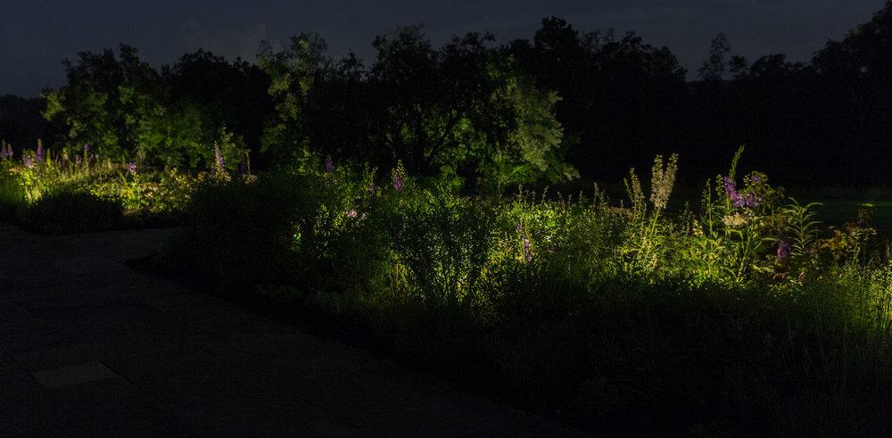 long-garden.jpg