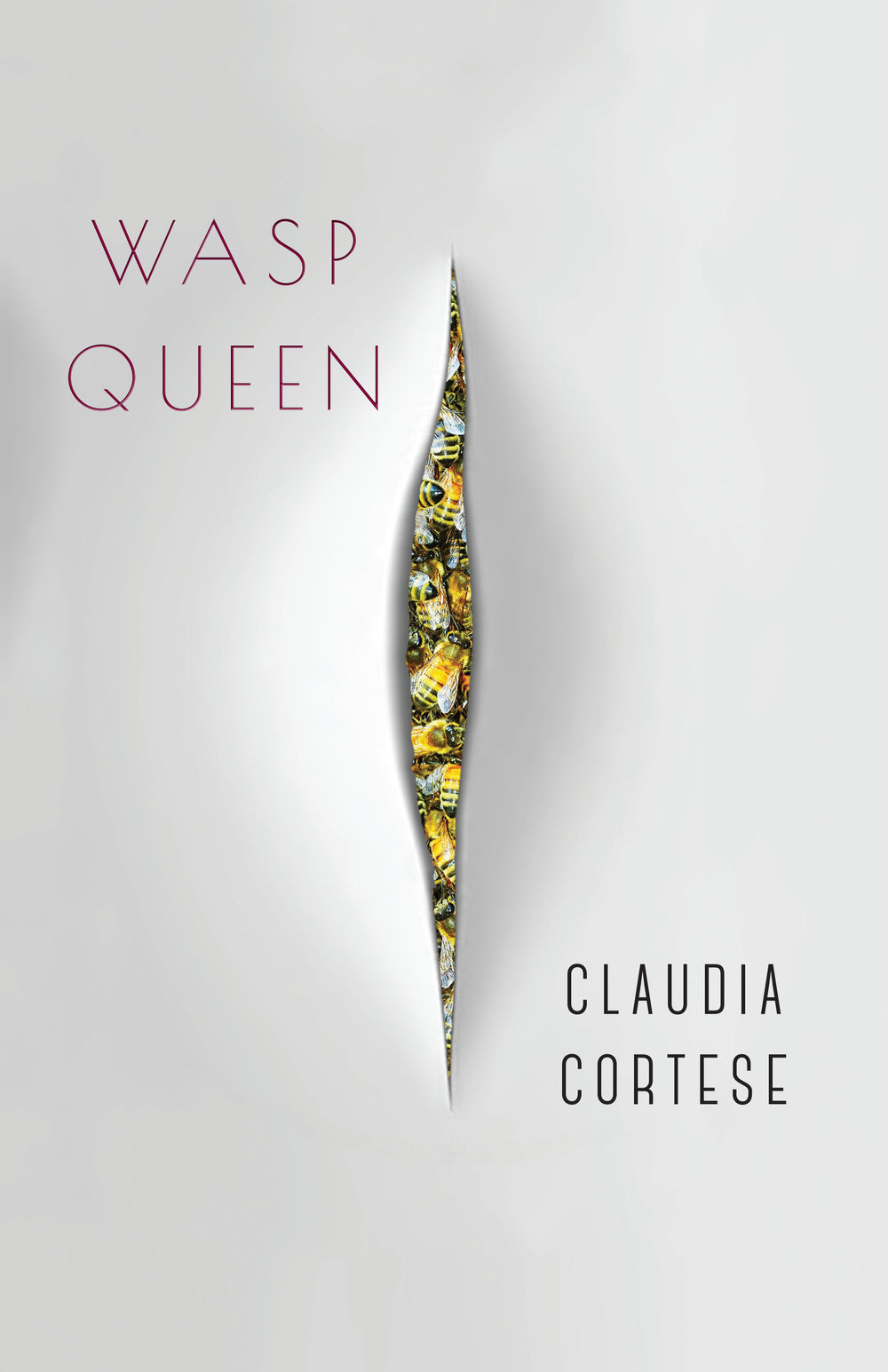 - Purchase Wasp Queen from Black Lawrence Press.