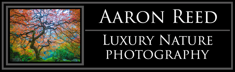 Aaron Reed Limited Edition Luxury Fine Art Nature Photography