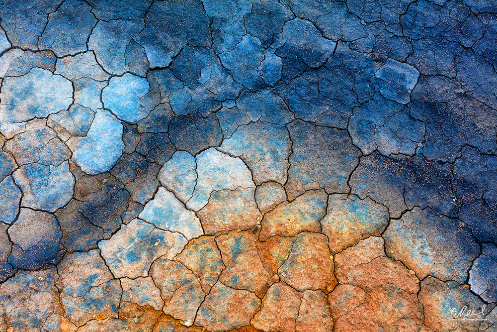 DragonSkin_Aaron_Reed_Photography