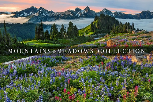Mountain And Meadow Landscape Photography