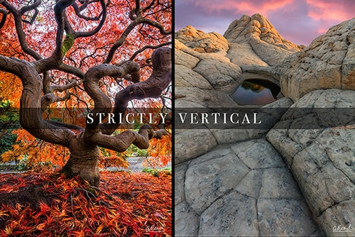 Vertical Fine Arts Photography Prints