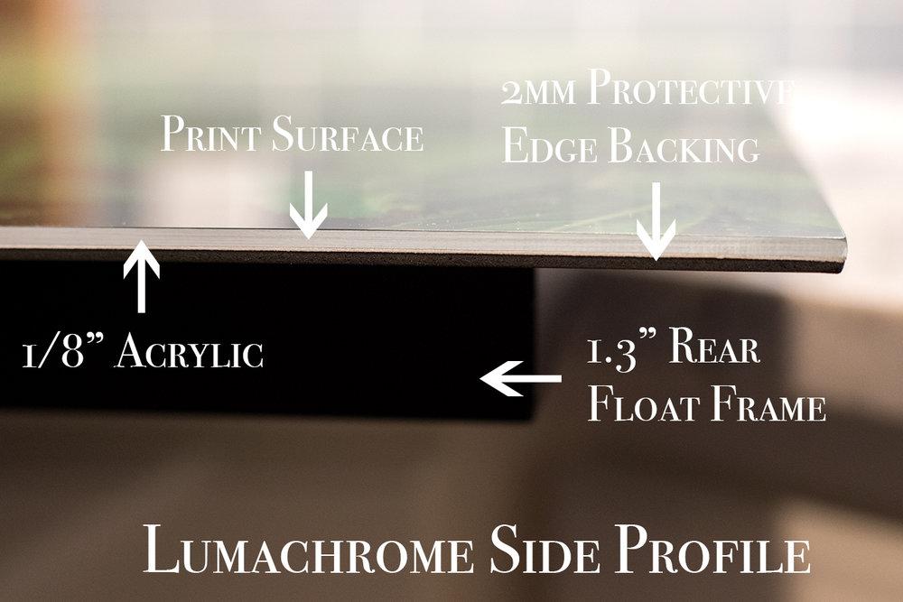 Side Profile II.jpg