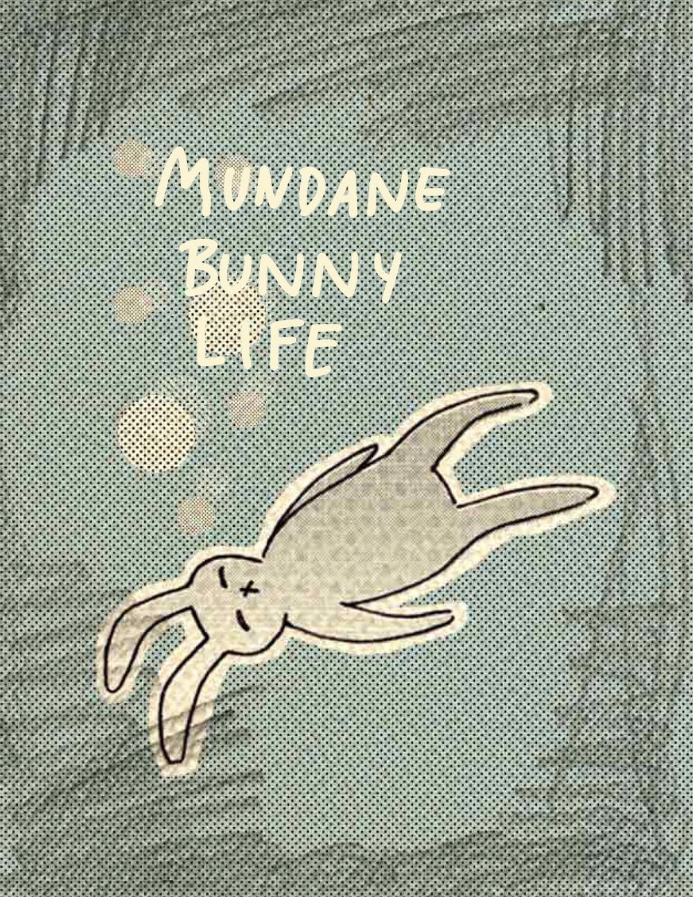 Mundane Bunny Life