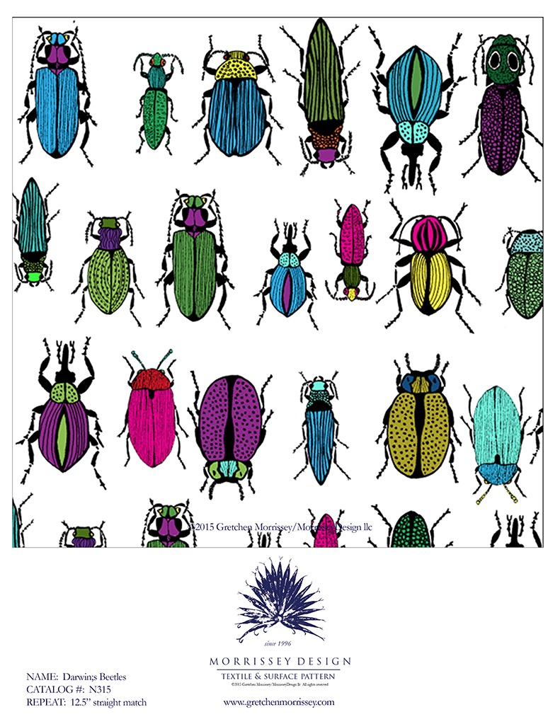 Darwin's Beetles Children's book illustration Darwin and the First Grandfather: A Story of Evolution
