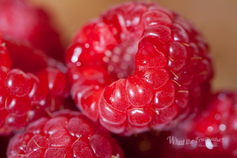 Protein Yoghurt Berries-6628.jpg
