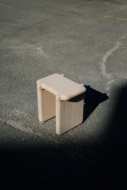 stool bone 01.jpg