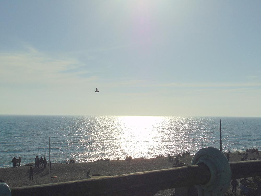Wondering-Through-Brighton-Beach-Sunset