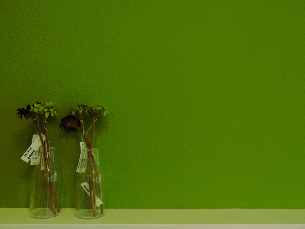 Wondering-Through-Venus-Beauty-and-Hair-Salon-Green-Wall-Hairdressers.JPG