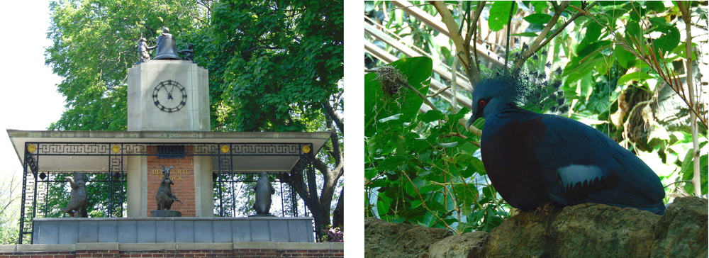 Wondering-Through-New-York-Central-Park-Zoo-Entrance-Bird.JPG