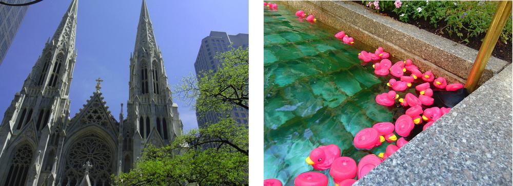 Wondering-Through-New-York-Cathedral-Pink-Ducks.JPG