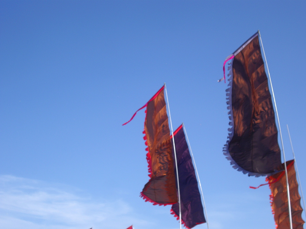 Wondering-Through-Glastonbury-Silver-Hayes-Flags.JPG