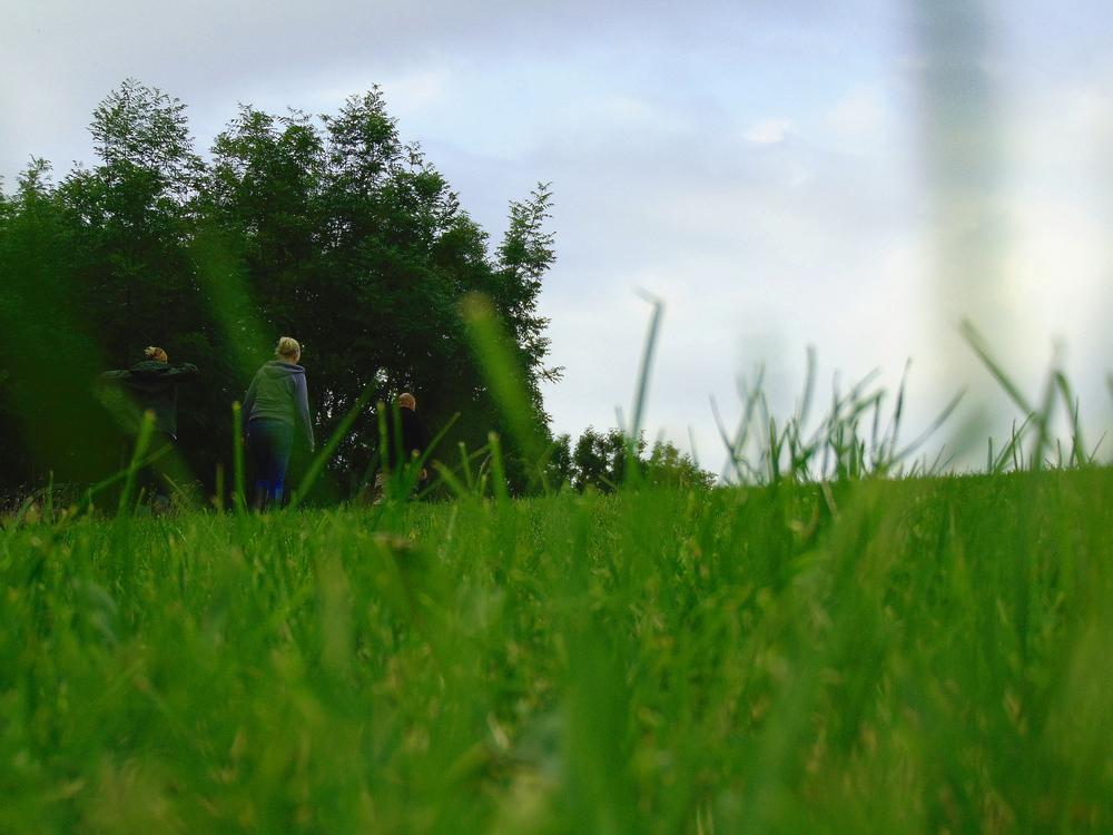 Wondering-Through-Devon-You're-Alright-Field-Walk.JPG
