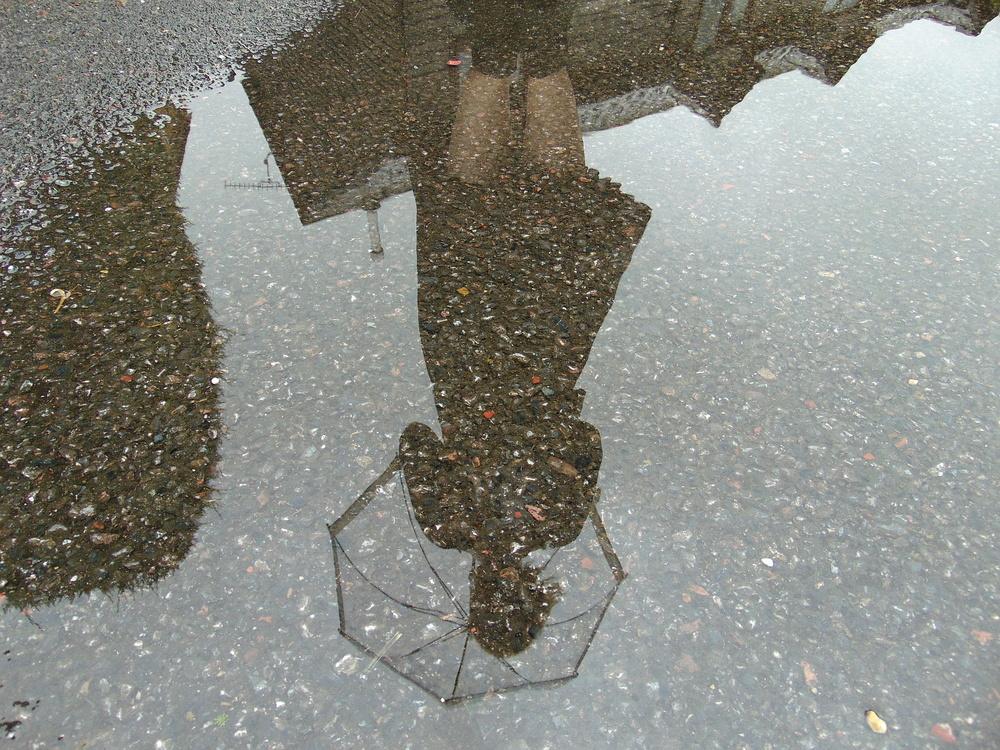 Wondering-Through-Rainy-Days-Reflection-in-Puddle.JPG