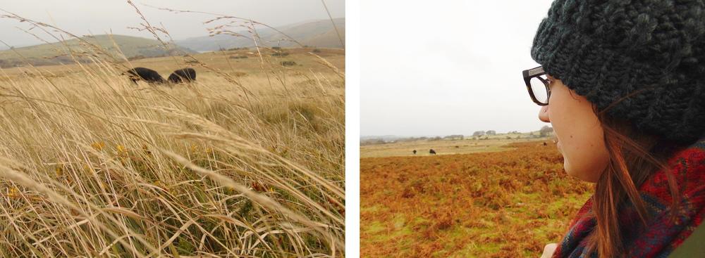 Wondering-Through-Autumnal-Days-Hidden-Dogs-Me-Scarf-Hat.JPG