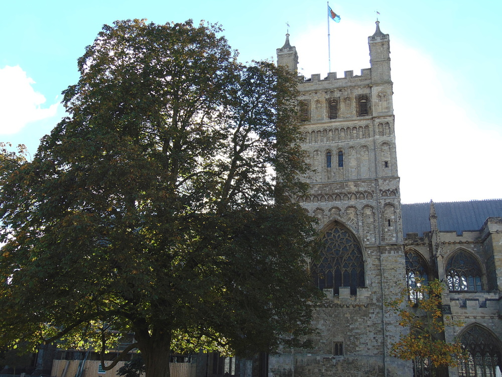 Wondering-Through-Local-Sites-Exeter-Cathedral-Green.JPG