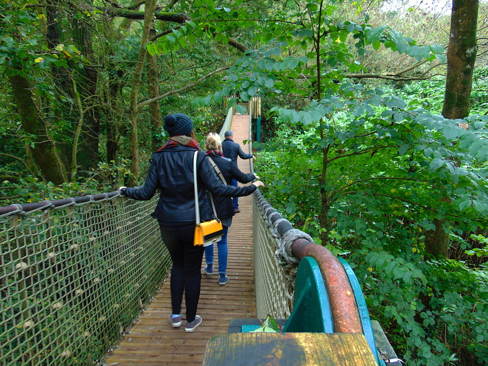 Wondering-Through-Staycation-South-Devon-Paignton-Zoo-Wobbly-Bridge.JPG