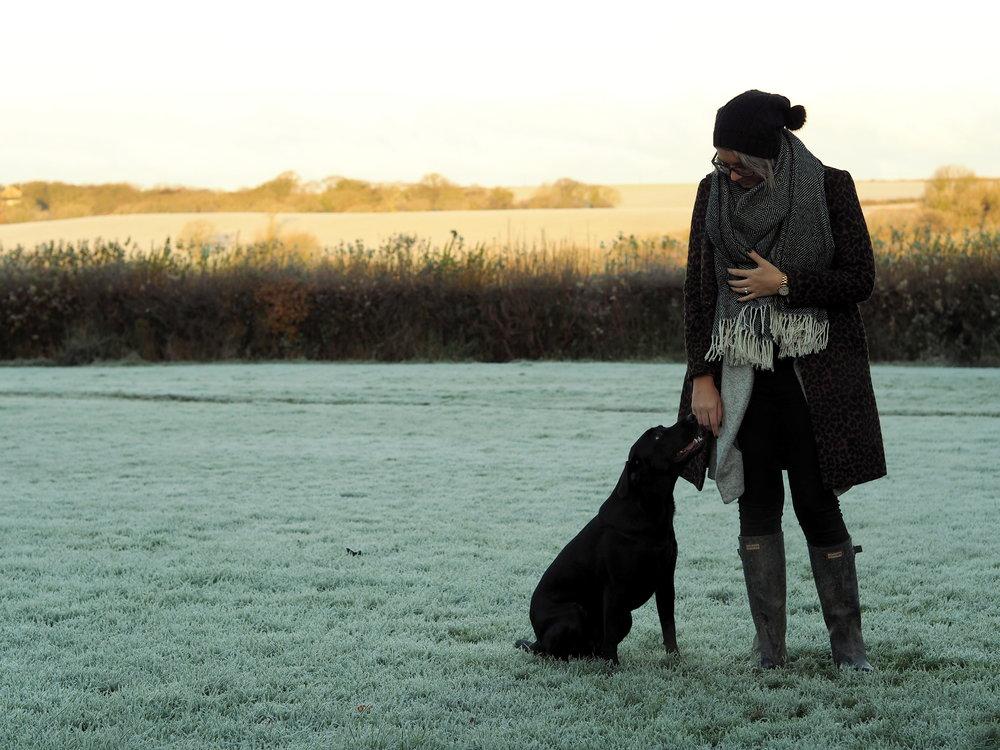 Wondering-Through-Lifestyle-Devon-Blogger-One-Year-Dog-Owner-Edie-Puppy-Labrador.JPG