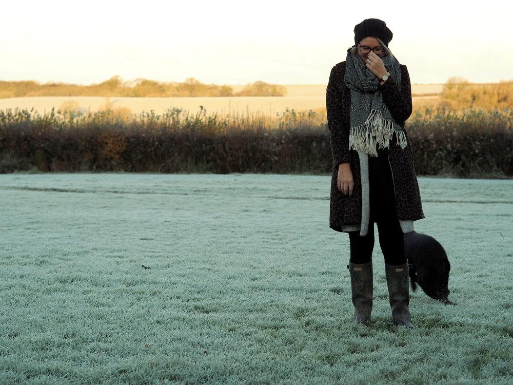 Wondering-Through-Lifestyle-Devon-Blogger-One-Year-Dog-Owner-Edie-Puppy-Love.JPG