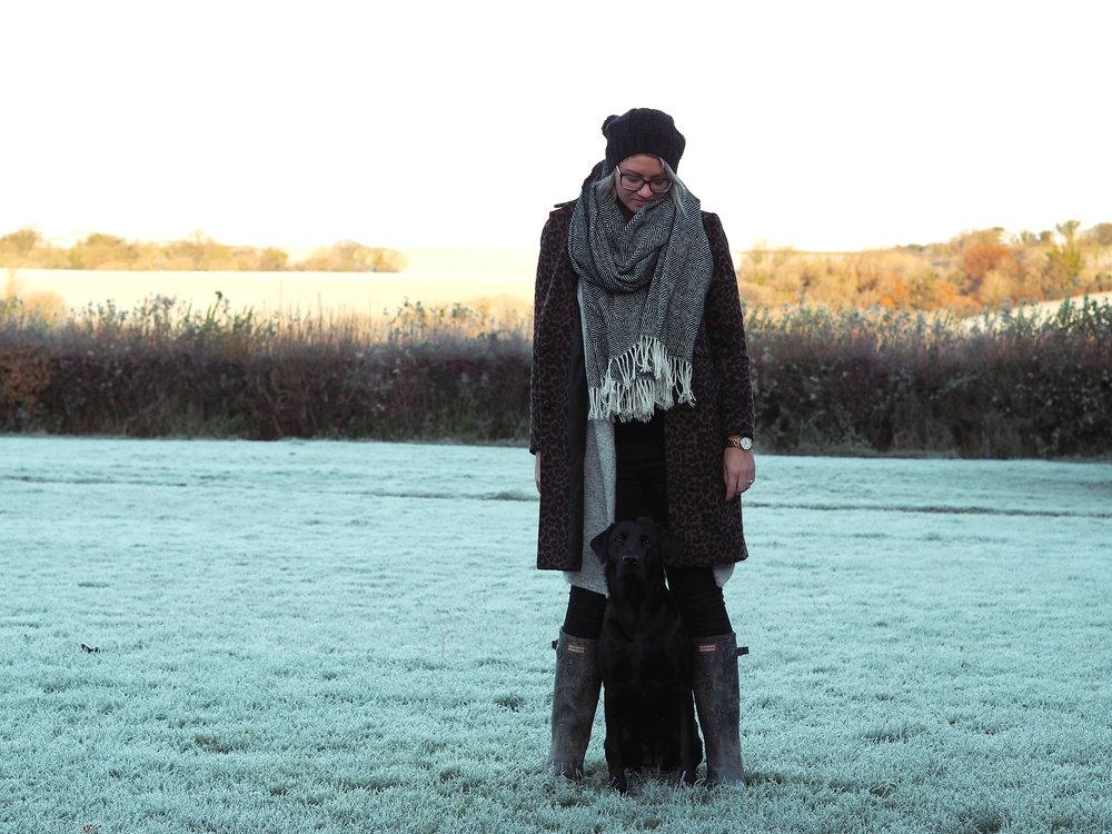 Wondering-Through-Lifestyle-Devon-Blogger-One-Year-Dog-Owner-Edie.JPG