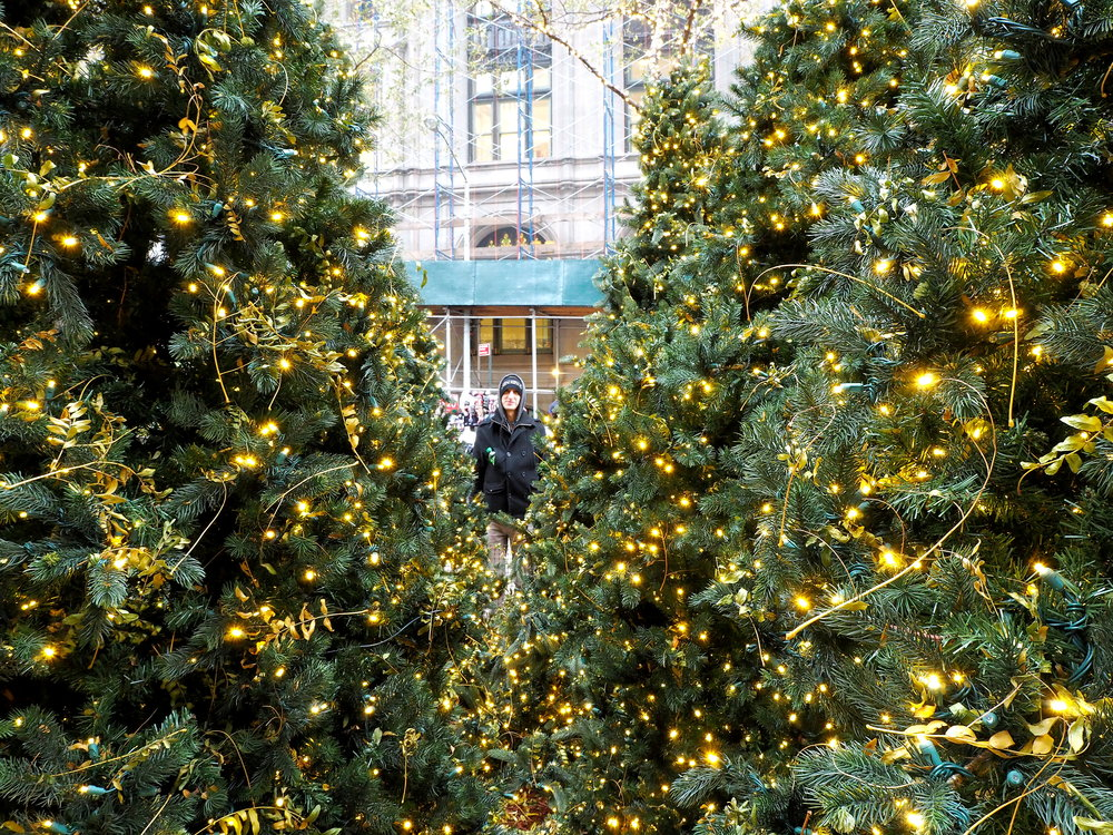 Wondering-Through-Visit-New-York-Manhattan-Travel-Blogger-Alex-Christmas-Trees.JPG
