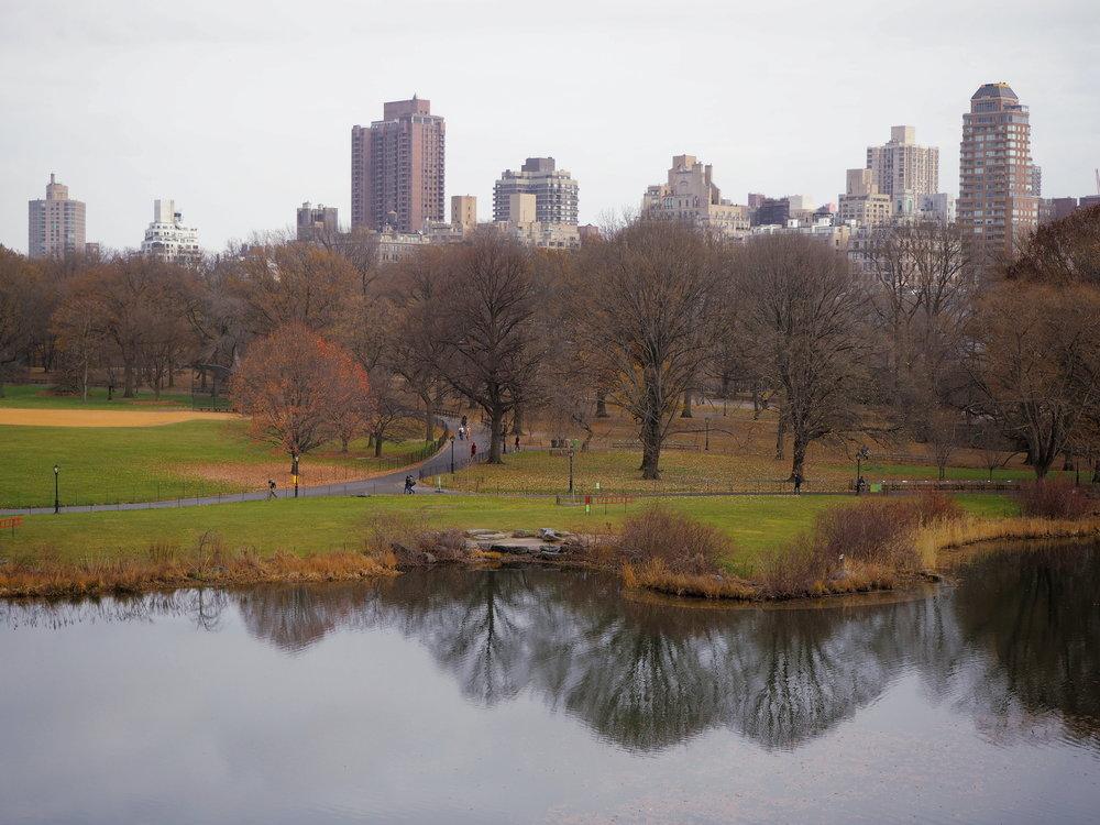 Wondering-Through-Visit-New-York-Manhattan-Travel-Lifestyle-Blogger-Central-Park-Belvedere-Castle-Turtle-Pond.JPG