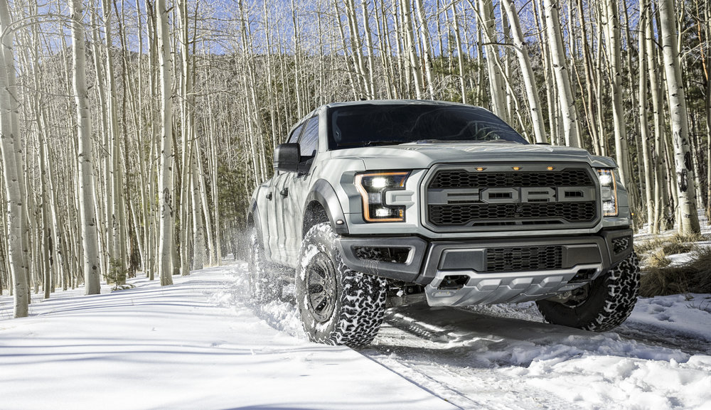 Gray_Raptor_Flagstaff_Snow_0074.jpg