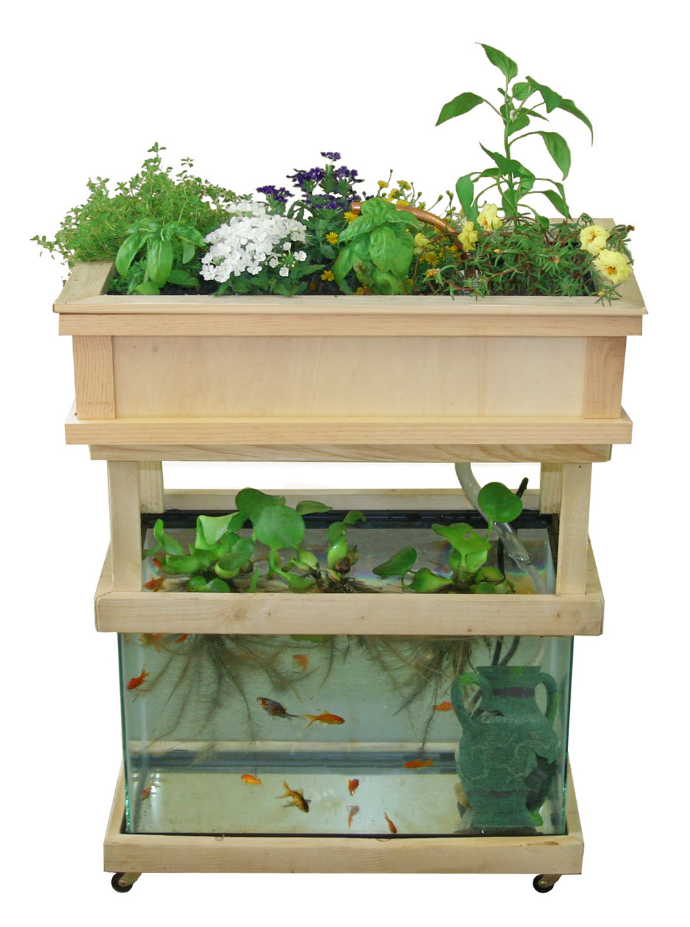 diy-aquaponics-fish-tank-5.jpg