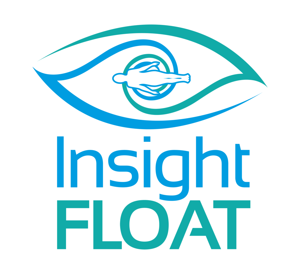 Insight Float.png