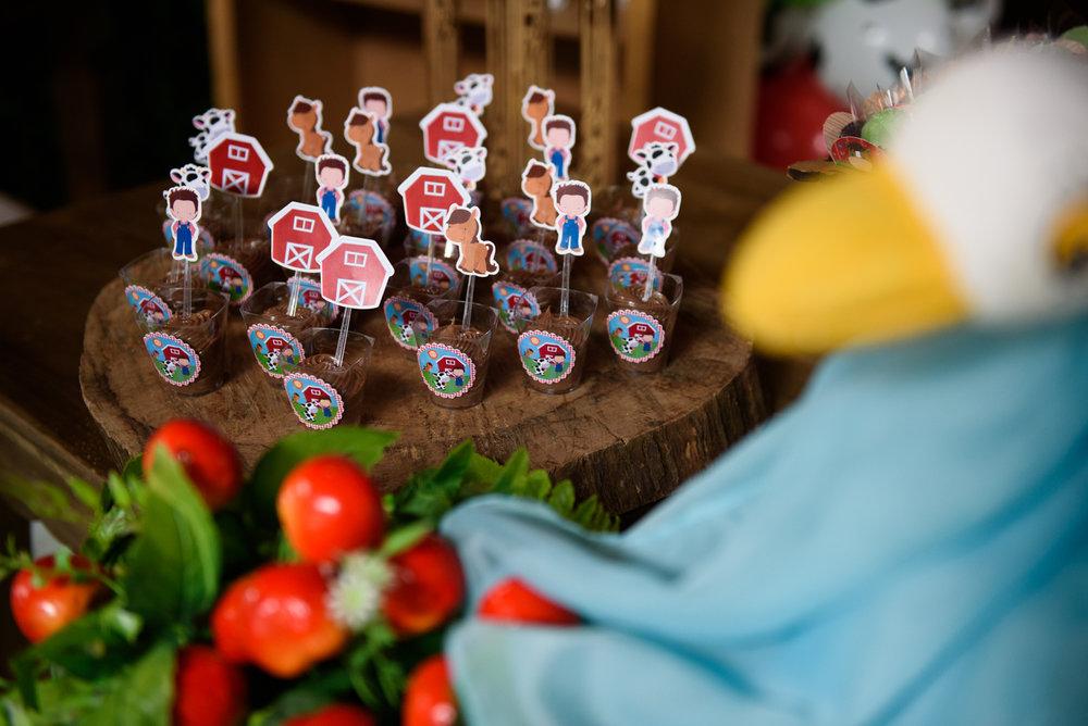 07-festa-infantil-curitiba-allegro-festade1ano-tema-fazendinha-guswanderley.jpg