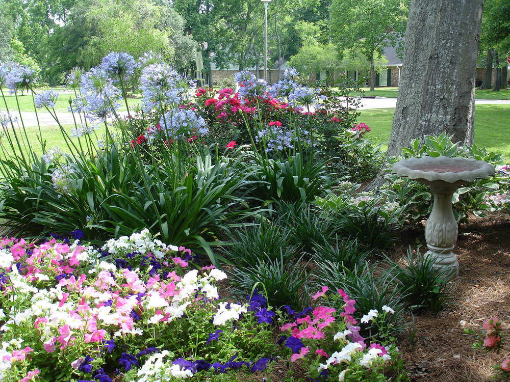 flowerbed-maintenance-seasonal-color-baton-rouge-area (10).JPG