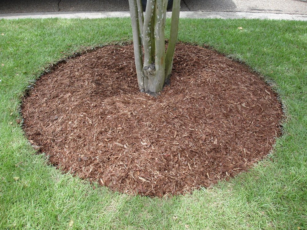 mulch-baton-rouge-area (1).jpg