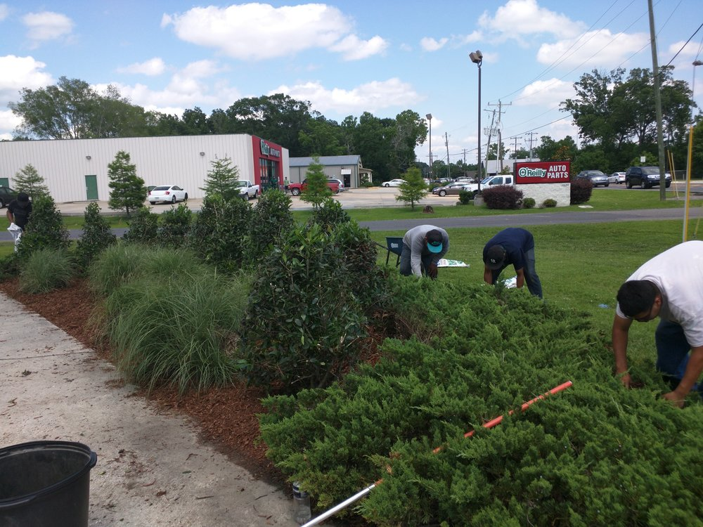 mulch-weeding-baton-rouge-area.jpg
