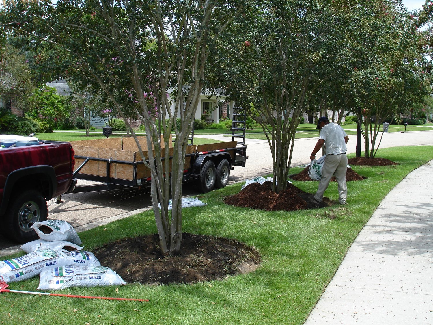 mulch your way to a better landscape u2014 lawn care mulch pruning
